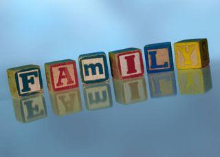 Family letter blocks